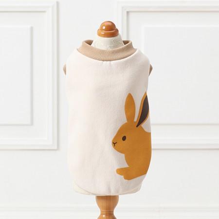 Carrot Bunny Top
