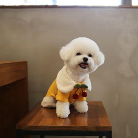 woolen knit jacket yellow